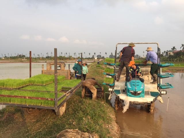Ngày hội xuống đồng, thôn Thúy Lai, xã Phú Kim, Huyện Thạch Thất, Hà Nội